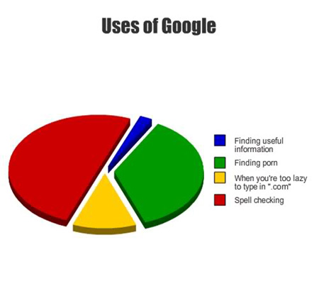 what we really use google for funny pie chart